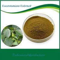 Buy cheap gmp certificate eucommia bark extract 20:1 from wholesalers