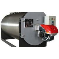 Natural gas fired Steam Boiler hot sale in Vietnam Danang