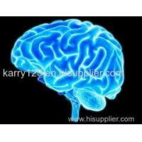 Buy cheap Supplement White Powder Piracetam CAS 7491-74-9 To Enhance Cognitive Function from wholesalers