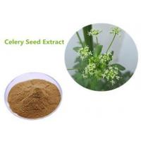 Buy cheap Ratio extract Celery seed extract from wholesalers