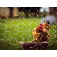 Buy cheap Poultry Netting  High Tensile Strength and Long Service Life from wholesalers