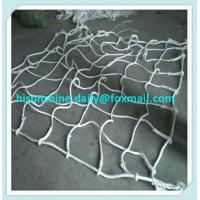 Buy cheap PP Cargo Net from wholesalers
