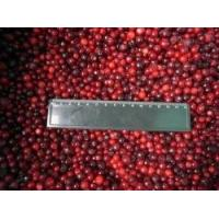 Buy cheap Frozen Lingonberry RC-FF-019 from wholesalers