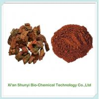 Buy cheap Pine Bark Extract|pure Pine Bark Extract Pycnogenol from wholesalers
