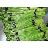 Buy cheap Other Fresh and Frozen Vegetables Product Title:Garlic stem from wholesalers