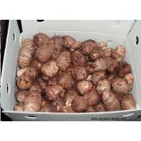 Buy cheap Other Fresh and Frozen Vegetables Product Title:Taro 04 product