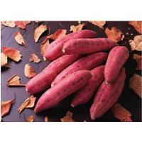 Buy cheap Other Fresh and Frozen Vegetables Product Title:Sweed potato 01 product