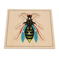 Buy cheap Teaching Aids Wasp Puzzle from wholesalers
