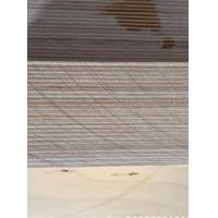 Buy cheap 100% Europea Baltic plywood product