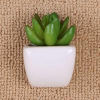Buy cheap 7cm Mini Artificial Succulent In White Magnet Ceramic Pot + Artificial Succulent & Tree from wholesalers