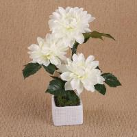 Buy cheap 24cm Three Flower Heads Artificial Dahlia In White Ceramic Pot + Artificial Chrysanthemum from wholesalers