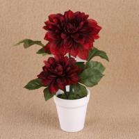 Buy cheap 28cm Two Flower Heads Artificial Dahlia In White Plastic Pot + Artificial Chrysanthemum from wholesalers