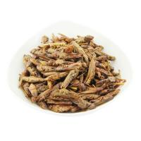 Buy cheap Cat Food Dried Grasshopper product