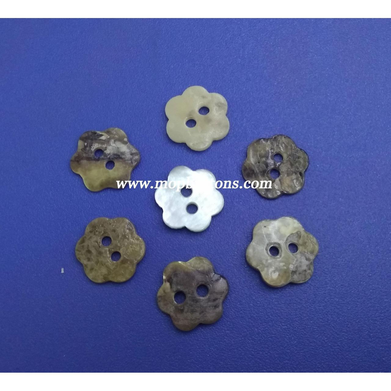 Buy cheap Plum Blossom Chinese Agoya Shell Button from wholesalers