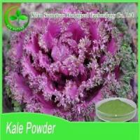 Fruit&Vegetable Extract Kale Powder