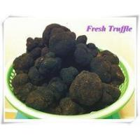 Buy cheap Sell Fresh chinese black truffle from wholesalers