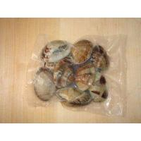 Frozen Cooked Short Necked Clam