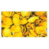 Buy cheap Apricot Activated Carbon product