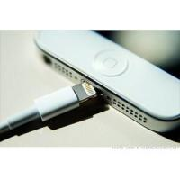 New Apple Cable-Authorized 8 Pin Connector For iPhone 5, iPad Mini