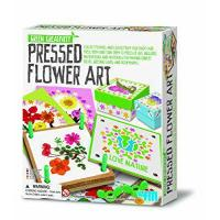 Buy cheap 4M Green Creativity Pressed Flower Art from Great Gizmos from wholesalers