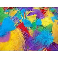 Buy cheap 250+ Assorted Coloured Feathers Art Craft Collage Hats Costume Millinery from wholesalers