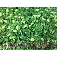 Buy cheap Organic Fruits & Vegetables Organic IQF Green Kale Chopped product