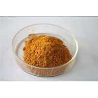 Food additive Ginger Extract