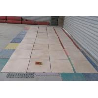 China Marble Tiles New Arriving Egypt Beige Marble Cut To Size Wholesale on sale