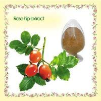 best price organic rose hip p.e.