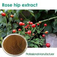 Natural Rose Hips extract Powder good price