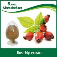 Buy cheap fructus rosae extract Rose hip Extract as an amazing supplement for Diarrhea from wholesalers