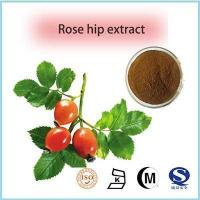 Buy cheap fructus rosae extract Best quality Rose hip Extract, VC 5%, healthcare supplement from wholesalers