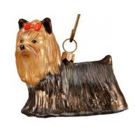 Buy cheap Yorkshire Terrier from wholesalers