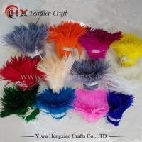 China HX Supplier Wholesale Dyed Rooster Saddle Feathers Fashion DIY Coque Feathers