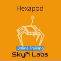 Buy cheap Online Courses Hexapod using Arduino Online Project based Course from wholesalers
