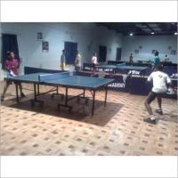 Buy cheap Table Tennis Product Code17 from wholesalers