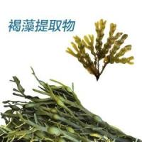 Buy cheap Brown seaweed extract from wholesalers