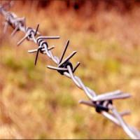 Buy cheap Wholesale Cheap price Barbed Wire fences from wholesalers