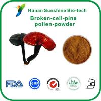 Buy cheap Broken cell pine pollen powder from wholesalers