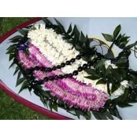 Buy cheap Graduation Package - Da Big One (Fragrant) from wholesalers