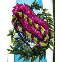 Buy cheap Orchid Flower Lei Graduation Package - Da Big One from wholesalers