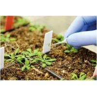 Buy cheap Agriculture Global Agricultural and Environmental Diagnostics Market Outlook (2014-2022) from wholesalers