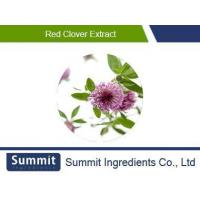 Buy cheap Red clover extract 8% Isoflavones,Biochanin A, Formononetin,Genistein,Dadzein from wholesalers