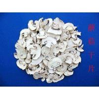 Buy cheap FD Mushroom from wholesalers