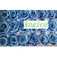 Buy cheap PF013 Preserved gradient color rose high quality rose from wholesalers