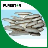 Buy cheap Pleurotus ostreatus extract 15% Beta Glucan from wholesalers