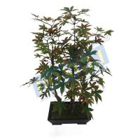 Buy cheap Mini Maple Bonsai Artificial Outdoor Plants and Trees Used for Decoration 168LVS (GK) W/P 18449 from wholesalers