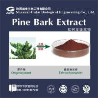 Buy cheap Natural French Pine Bark Extract//Pinus massoniana/Pine Bark Extract 95% OPC(Proanthocyanidins) from wholesalers