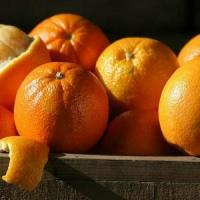 Buy cheap NAVEL ORANGES NO.37 delivery basket to china from wholesalers