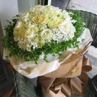 Buy cheap New Year's Flowers Pure Beauty from wholesalers